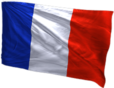 французская ветка танков